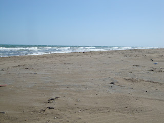 Punta de La Banya beach landscape