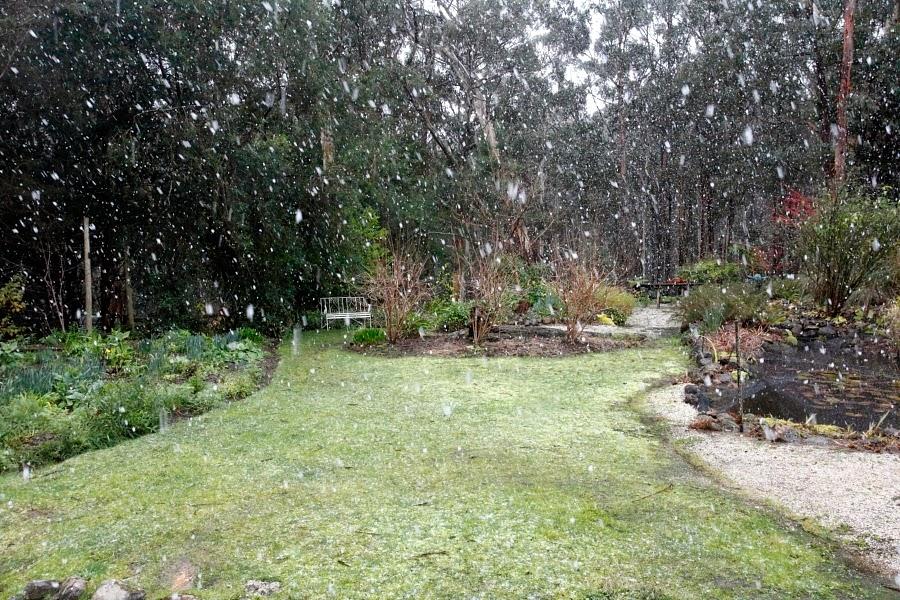 Greendale, Snow