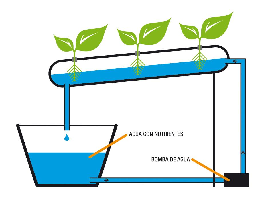 Urveg cultivo hidrop nico urbano for Sustrato para mesa de cultivo
