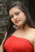 actress Shipra photos gallery-thumbnail-16