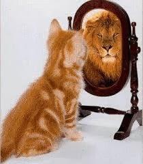 yakin diri, bina keyakinan diri, percaya diri sendiri, motivasi diri