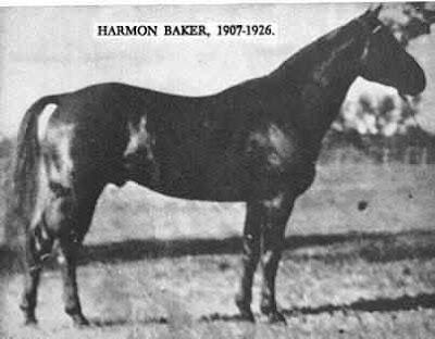 Harmon Baker