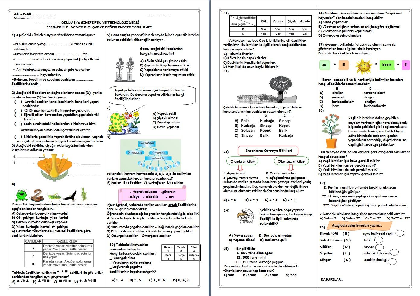 Sınıf fen ve teknoloji dersi 2 dönem 3 yazılı soruları
