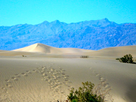 Footsteps in the sand of the White Dunes in Death Valley NP