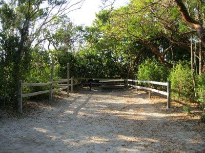 Bahia Honda State Park Camping Tent Site