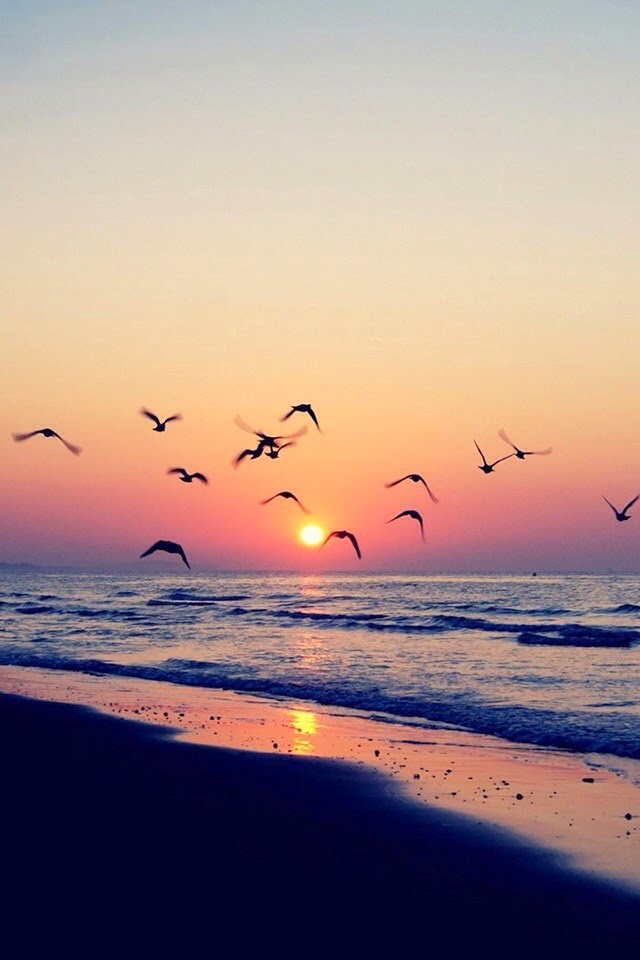 beach sunset wallpapers for Iphone