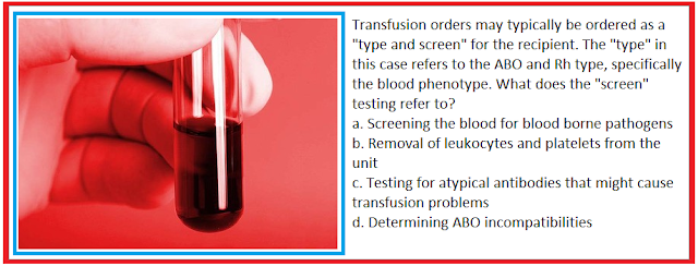 how to blood transfusions work