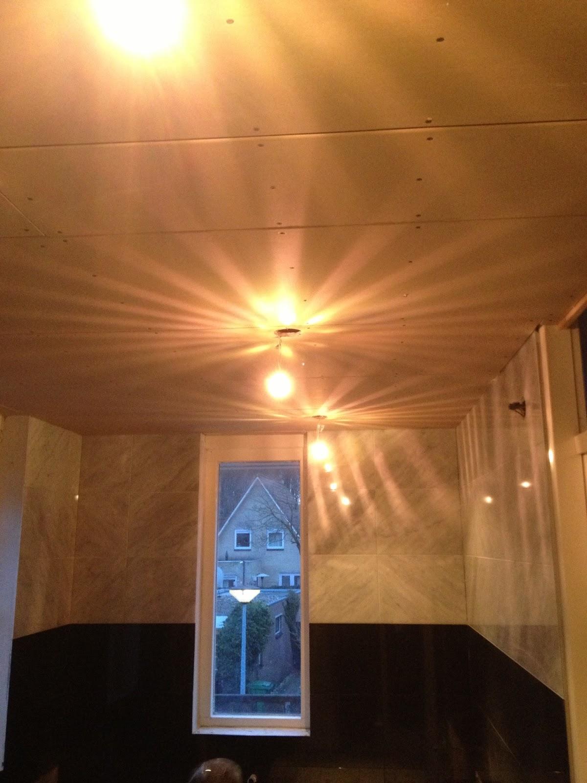 vandenboombouw verlaagd plafond