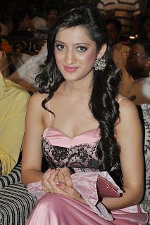 Richa Panai in Deep Neck Silky Pink Gown at Lavakusa Audio Launch Function