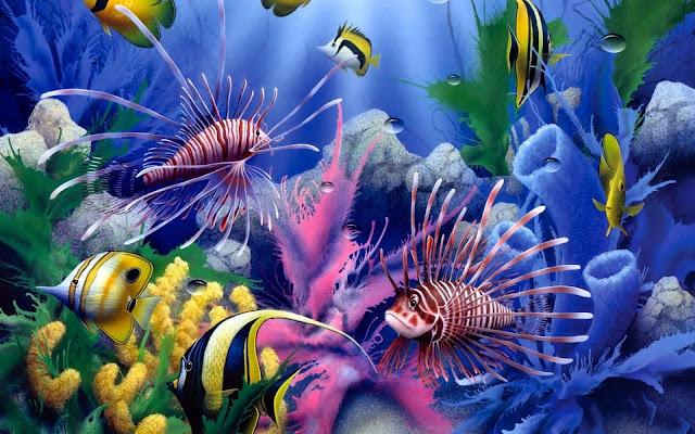 Fondo Marino Peces Banco de Coral Imagenes de Fondos de Peces