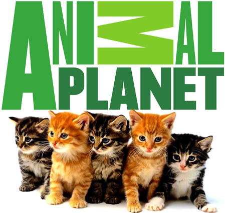 Animal Planet Brasil
