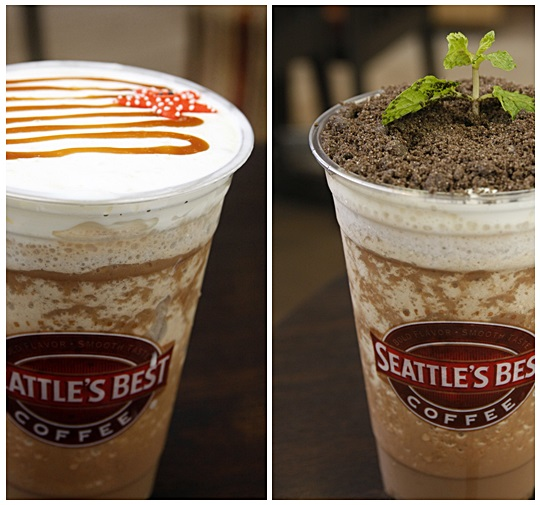 Seattle's Best Coffee Javakula Peppermint Pot and Sea Salt