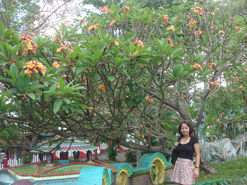 Soothing Day Tiger Balm Gardens Sweet Life In Singapore
