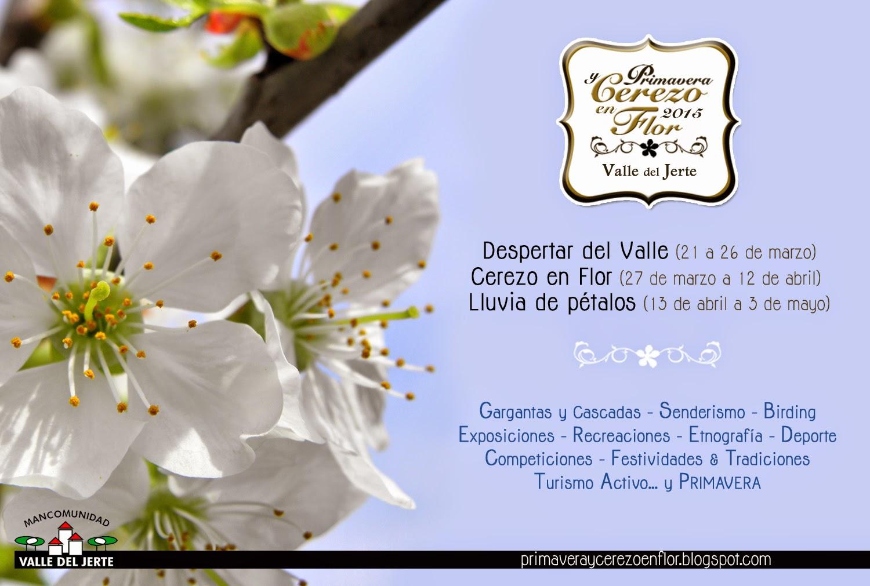 Imagenes Flores De Primavera - Flor de primavera HD :: Imágenes y fotos Florespedia com