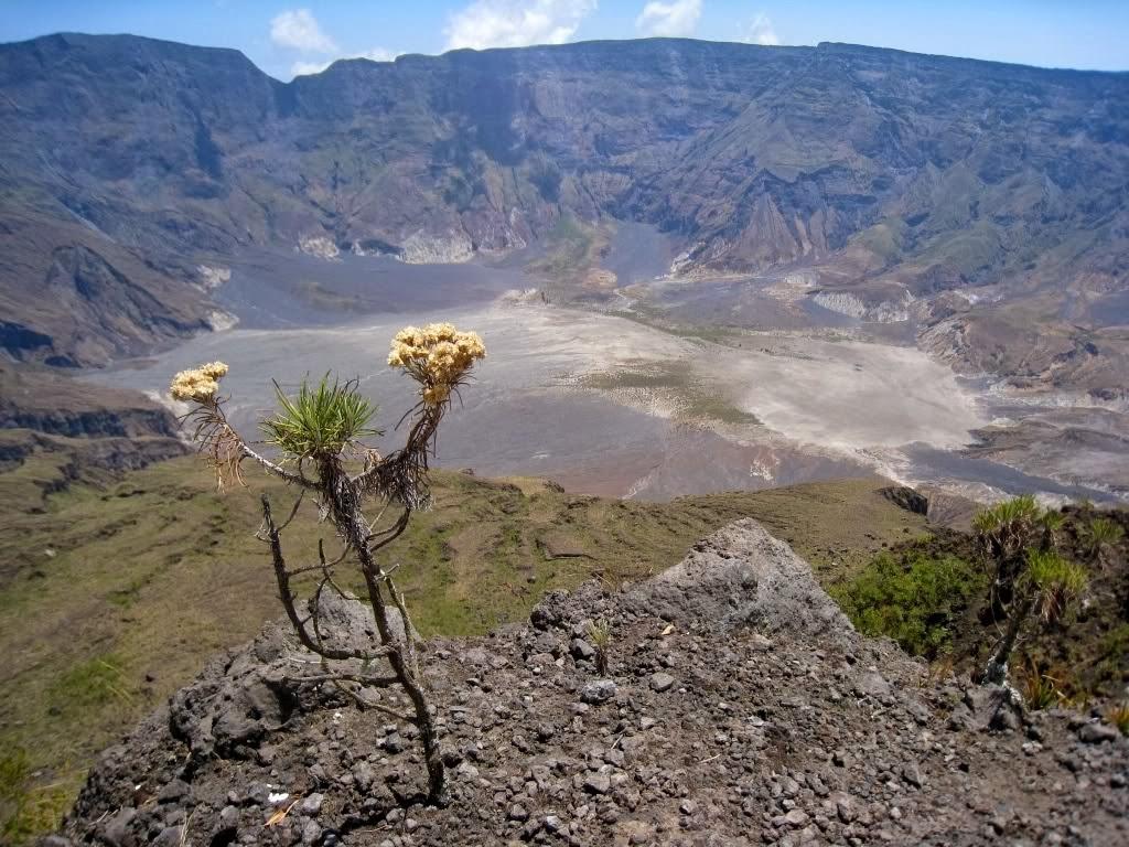 Letusan Gunung Tambora