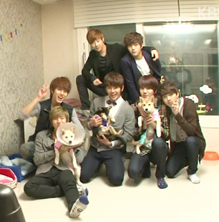 from KBS channel, this show is about Infinite raising 3 dogs