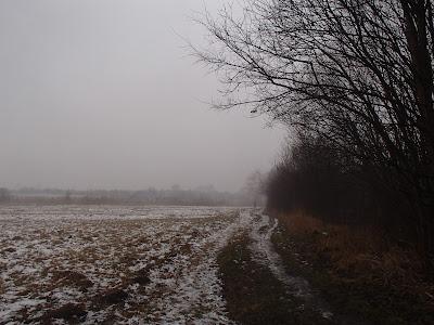 Koniec pierwszego śniegu, odwilż, marznąca mżawka, gołoledź łąki na Ruczaju, jazda na sankach, zimowy spacer