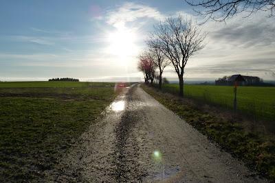 Grusvägen till Ellinge. foto: Reb Dutius