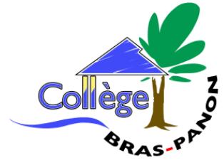 Collège BRAS PANON
