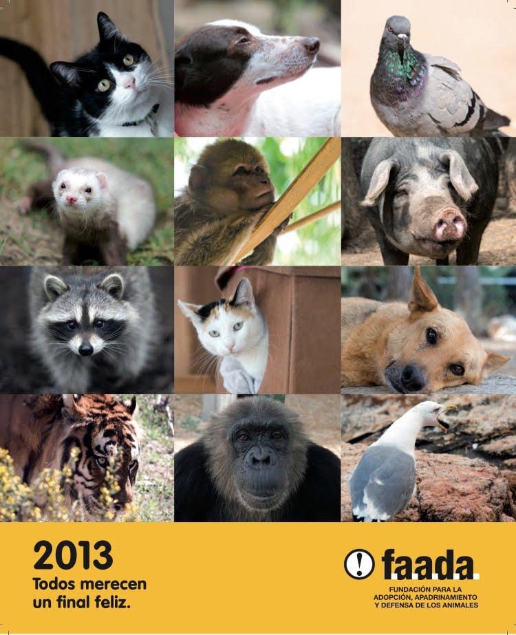 Calendario FAADA 2013