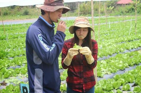 Làng nông nghiệp Nhật Bản tại Việt Nam