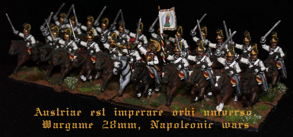 Austriae est imperare orbi universo. Wargame 28mm, Napoleonic wars