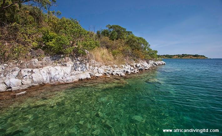 maleza_island.jpg