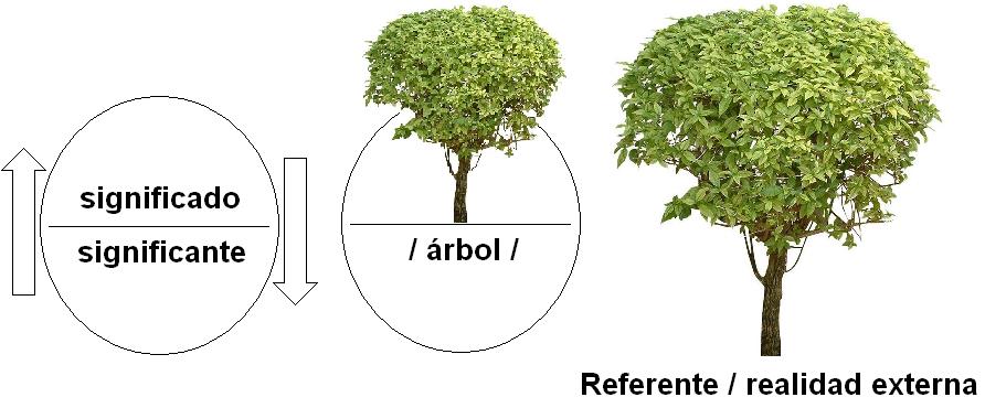 Palabra escrita curso general de lectoescritura y for Significado de la palabra arbol