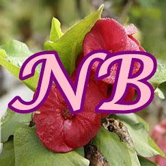Nur's Bloglist