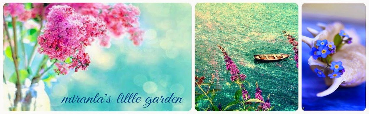 Miranta's little garden