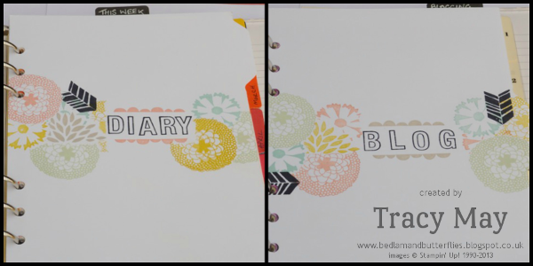 stampin up organisation ideas diary inserts envelope punch board petal parade