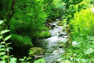 Vista del río Pino