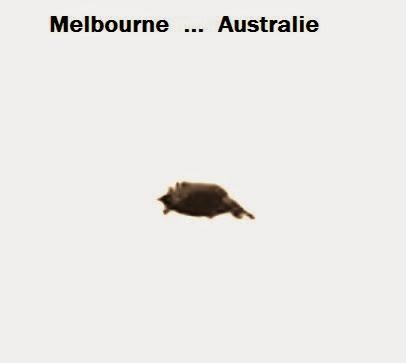 Australie  27/09/2013  ... 05:15 PM