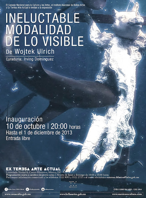 Exposición individual de Wojtek Ulrich en el Ex Teresa Arte Actual