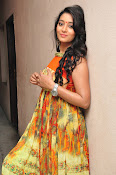 Bhanu Sri Mounam Movie Launch-thumbnail-20