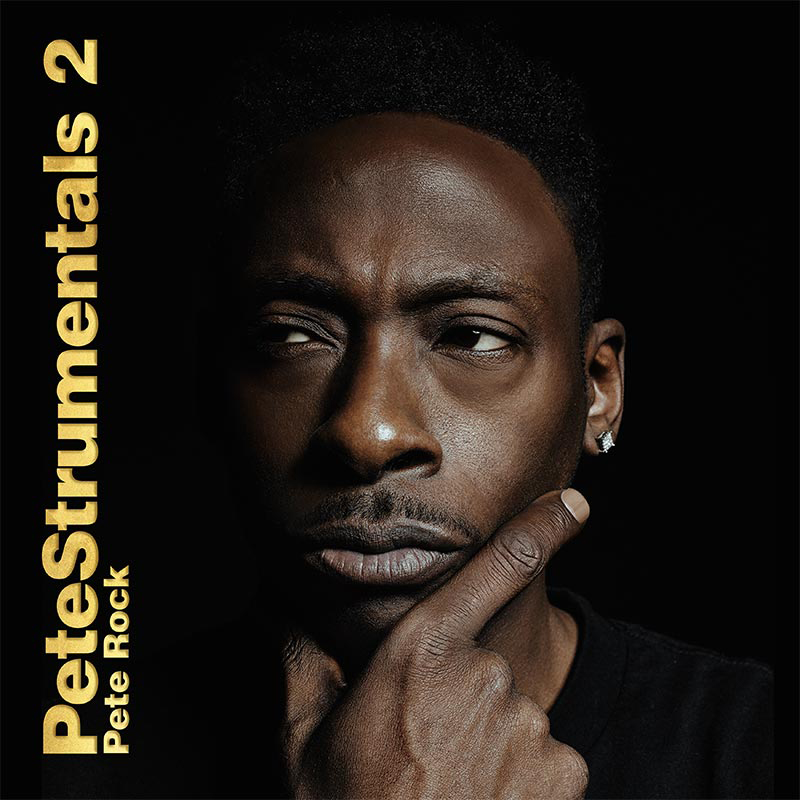 Song of the Day - SOTD: Pete Rock - One, Two, A Few More | Petestrumentals 2