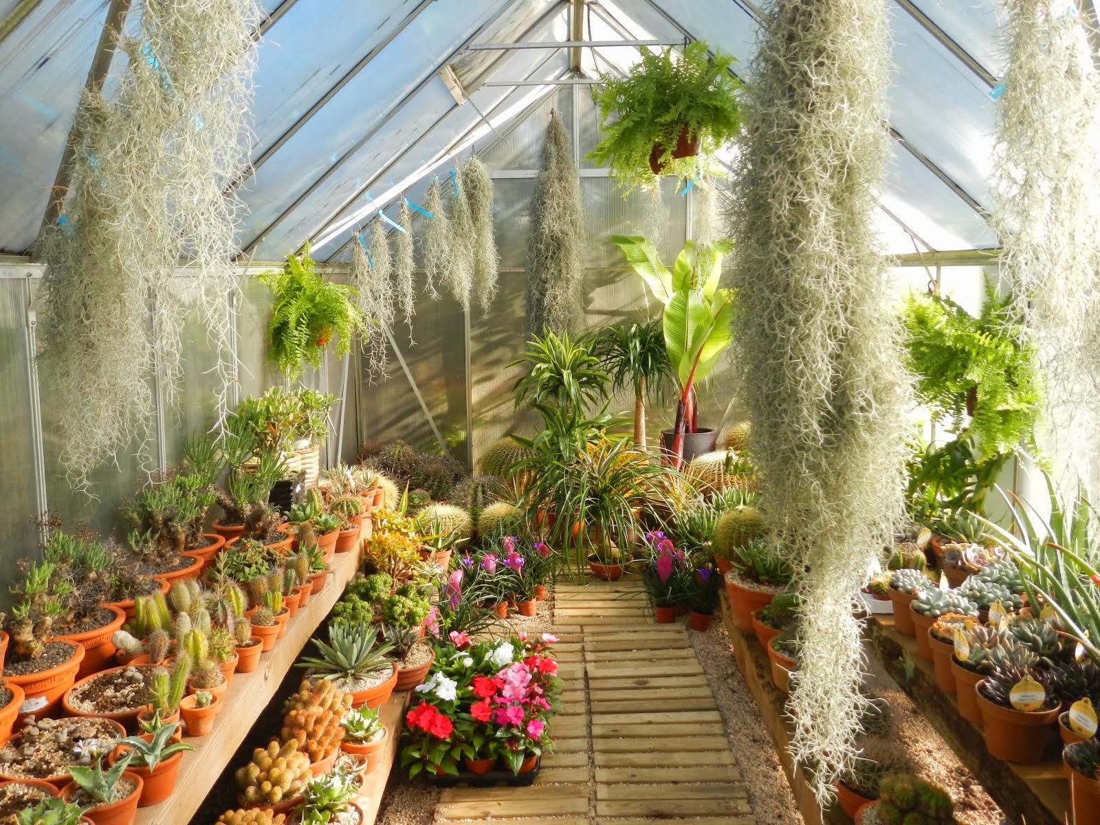 Centro de Jardinagem da Sobreda