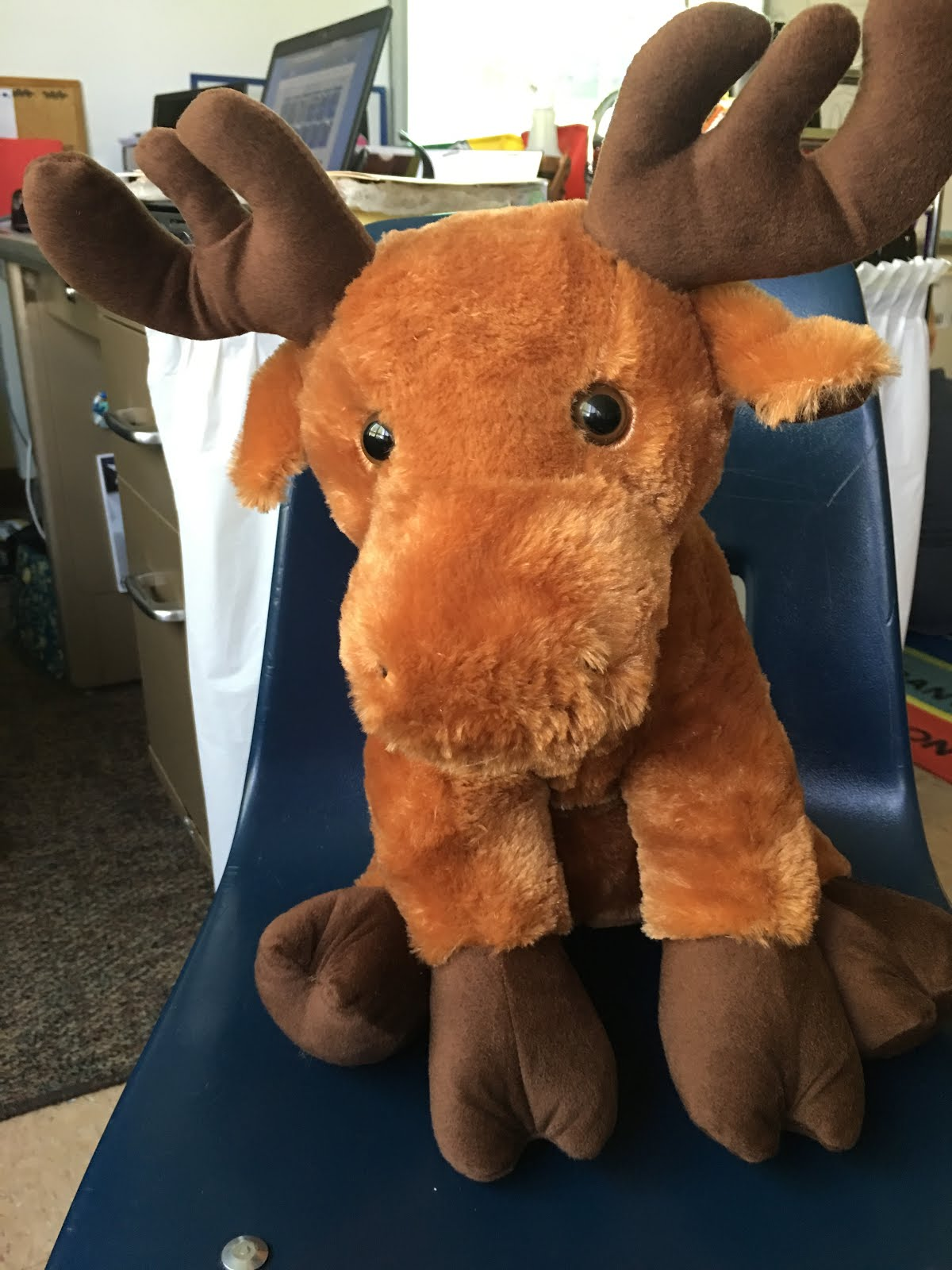 Meet Mighty Moose