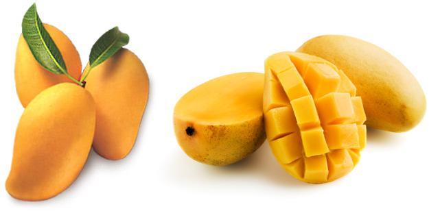 Mango-fruit.jpg