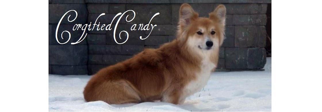 Corgified Candy