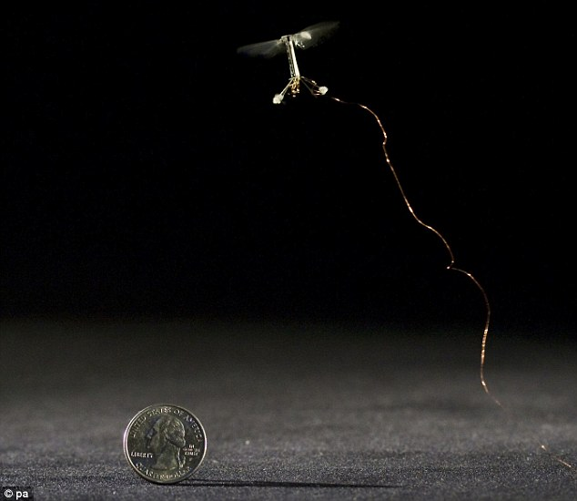 Harvard University's tiny 80 milligram device the size of a house fly called a RoboBee