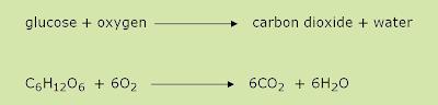 aerobic oxygen