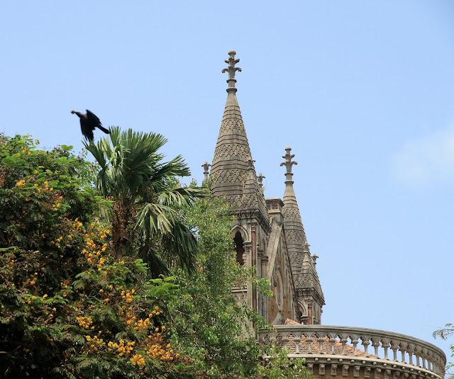 mumbai, fort, gothic, building, raven