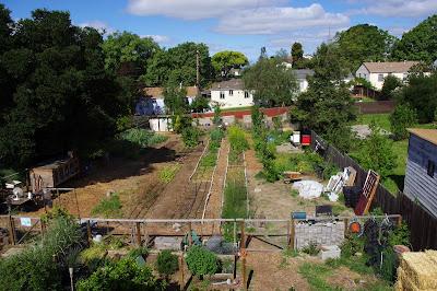 backyard farming your backyard farm