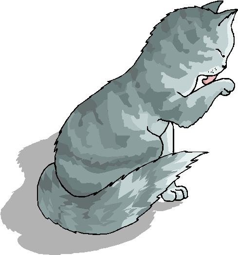 Cute and Funny Cat Free Clipart