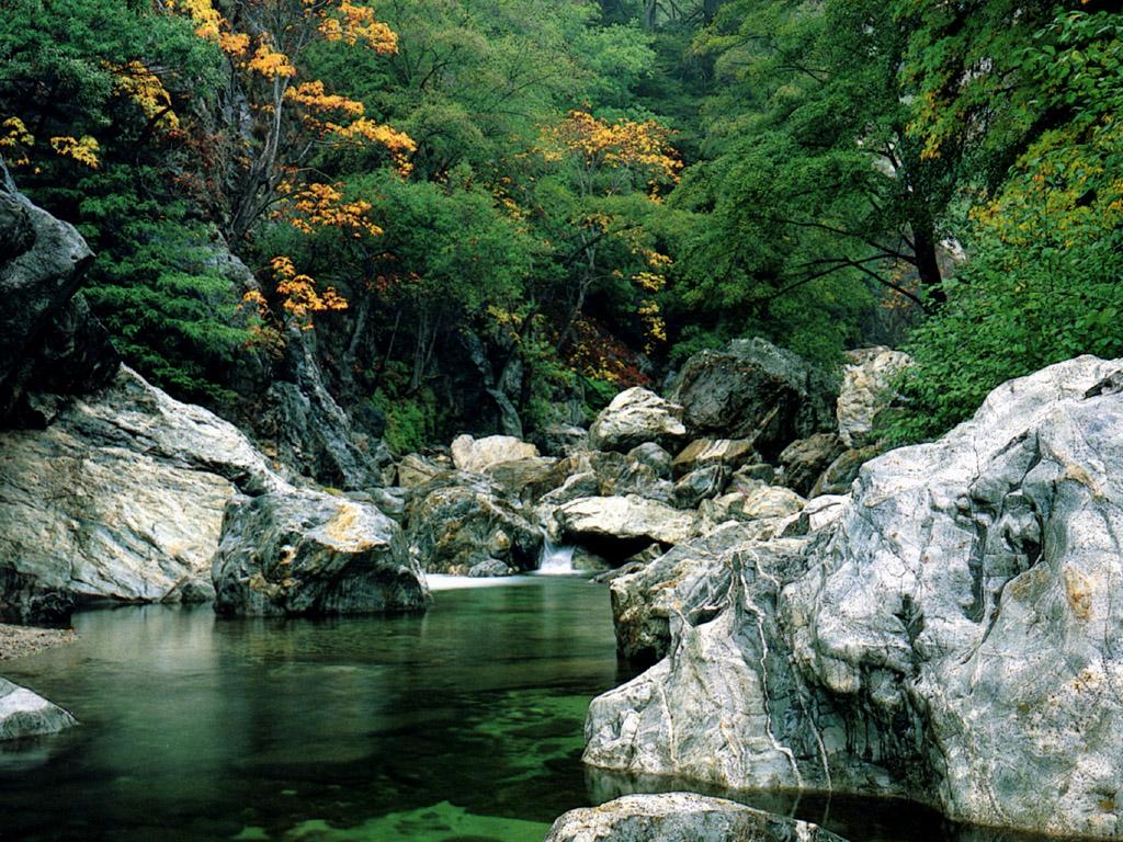 beautiful river wallpaper wallpaper pictures