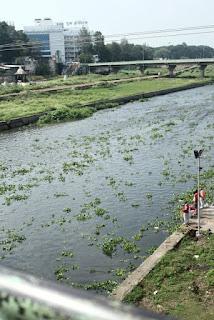 Pune, Ganapati immersion, Eco friendly Ganapati