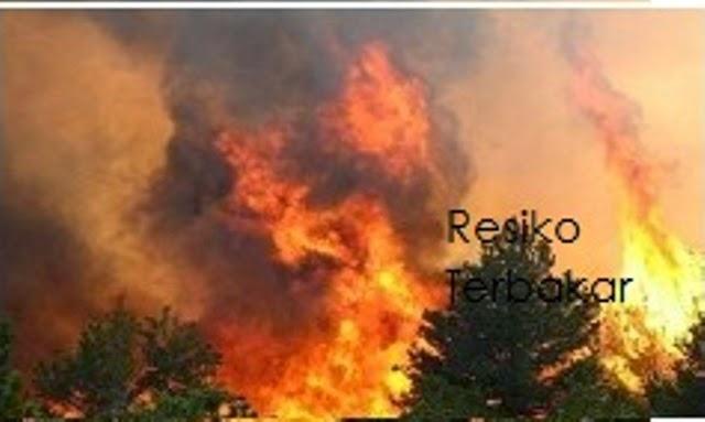 Gambar Kebakaran