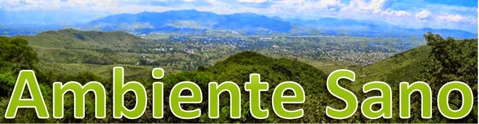 www.ambientesano.net
