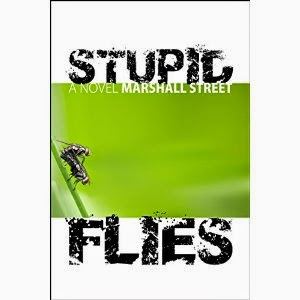 stupid flies, marshall street, stupid flies a novel
